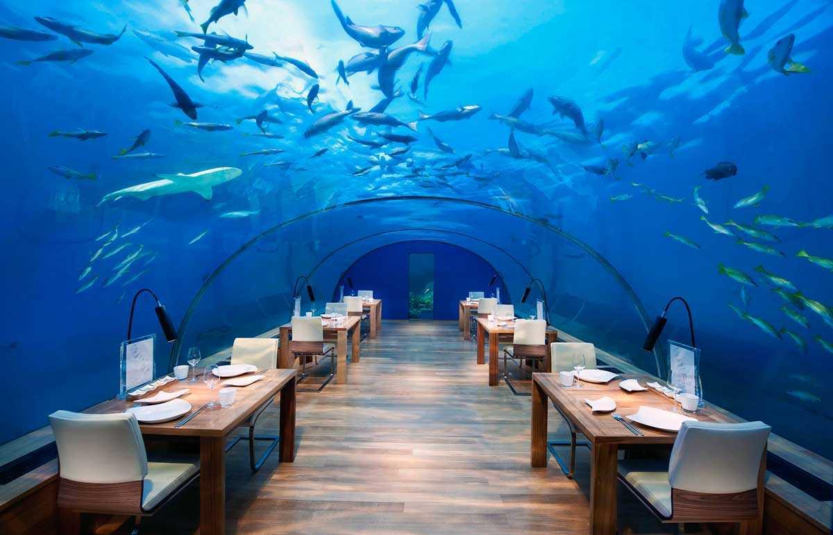 Ithaa Undersea Gastronomia Sensorial